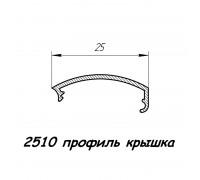 2510 профиль алюминиевый крышка, анод